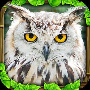 Owl Simulator v1 Hile Apk indir