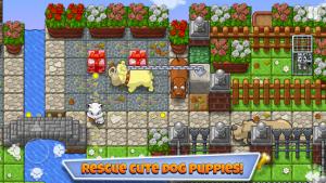 Puppies Premium